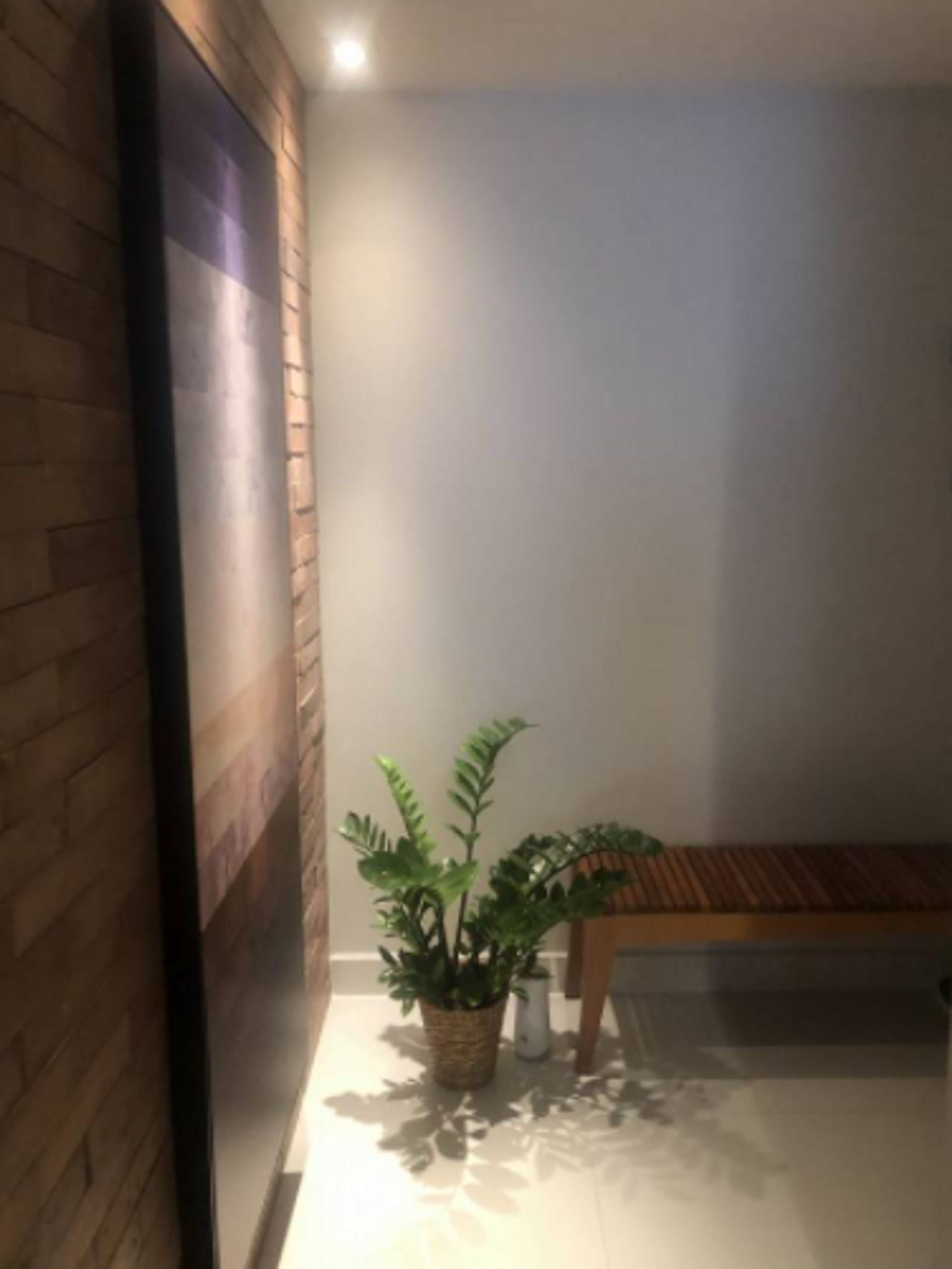 Foto de Quarto com vaso de planta