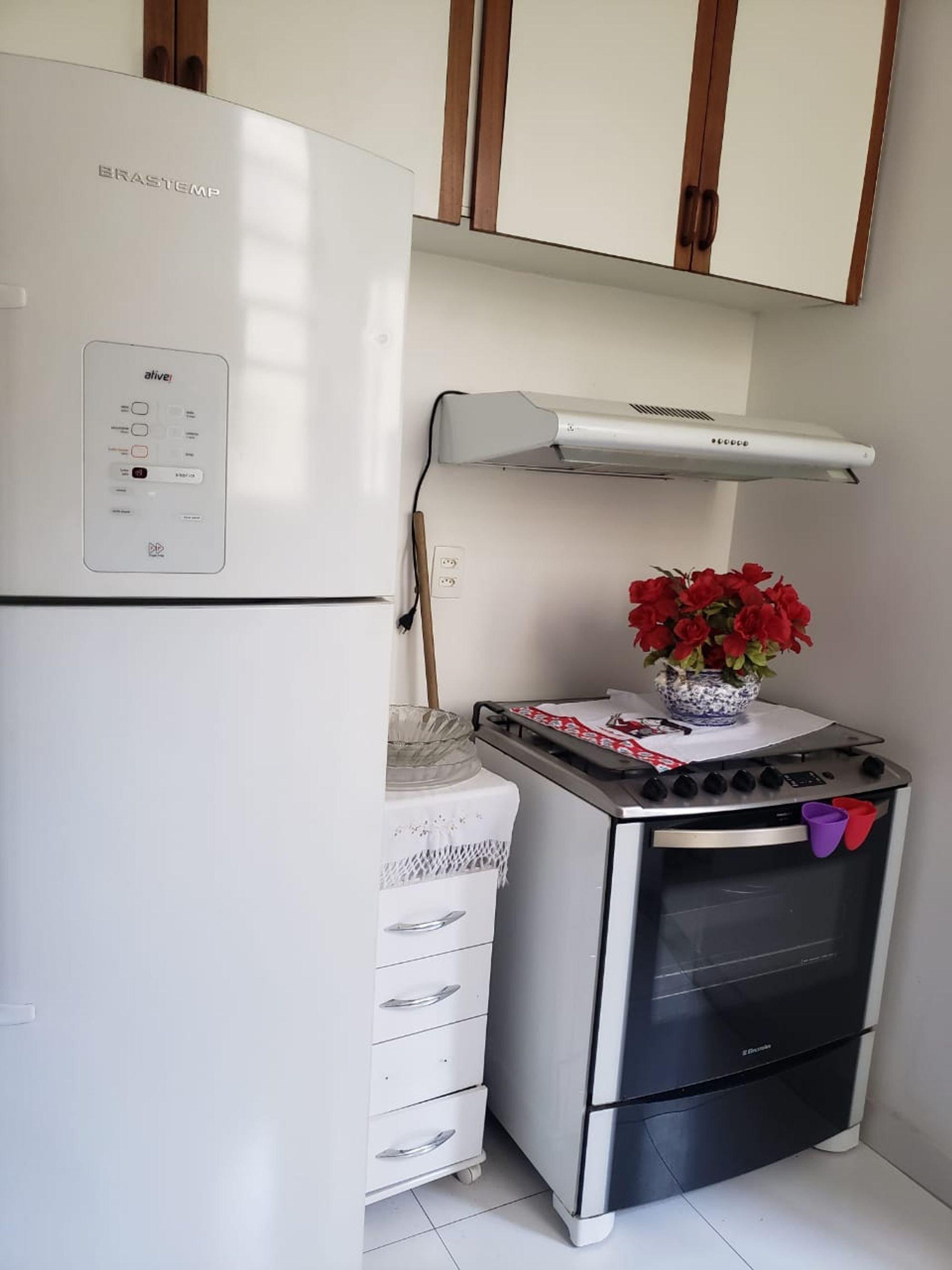 Foto de Cozinha com vaso de planta, geladeira, vaso