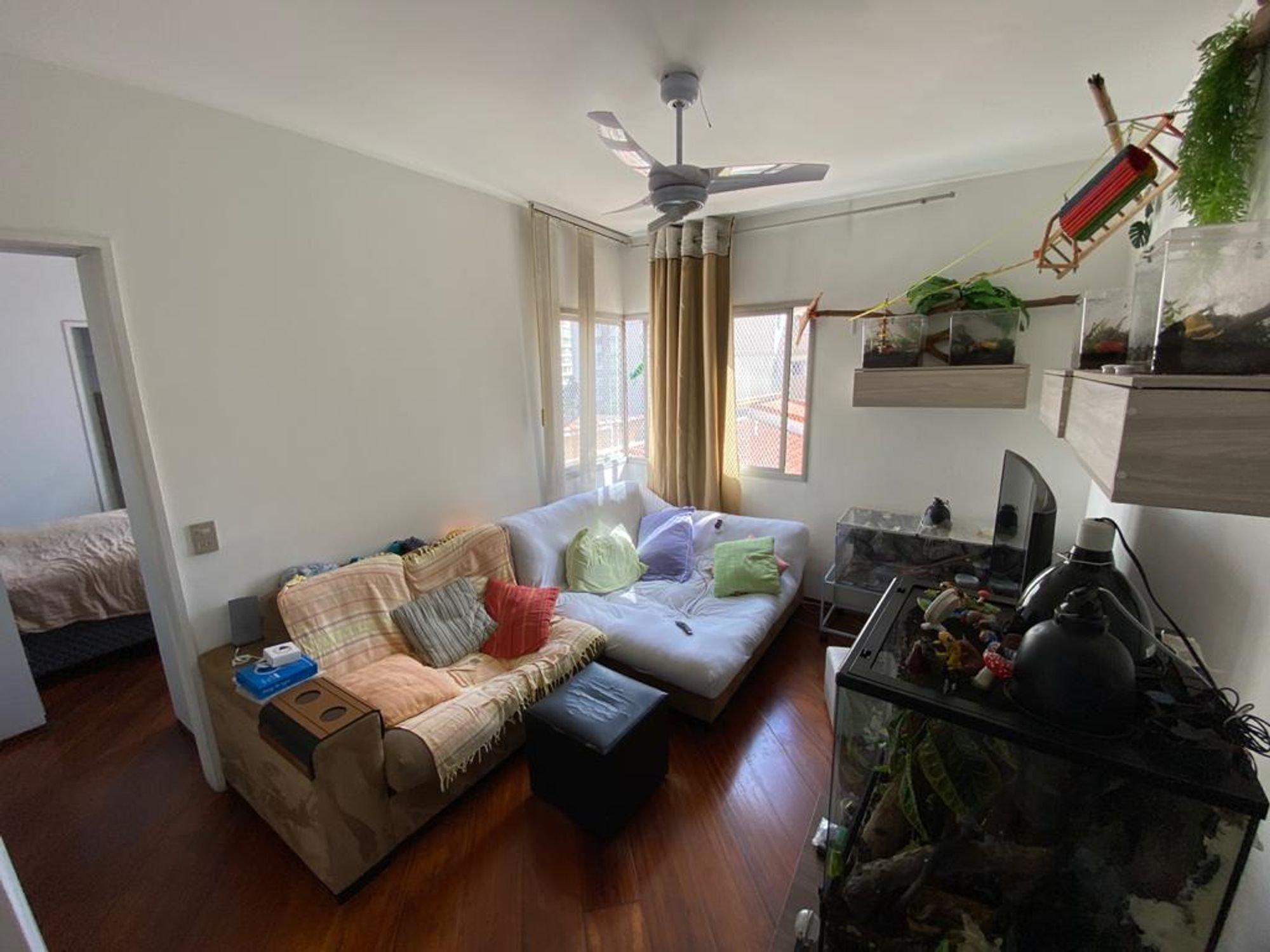 Foto de Quarto com vaso de planta, sofá
