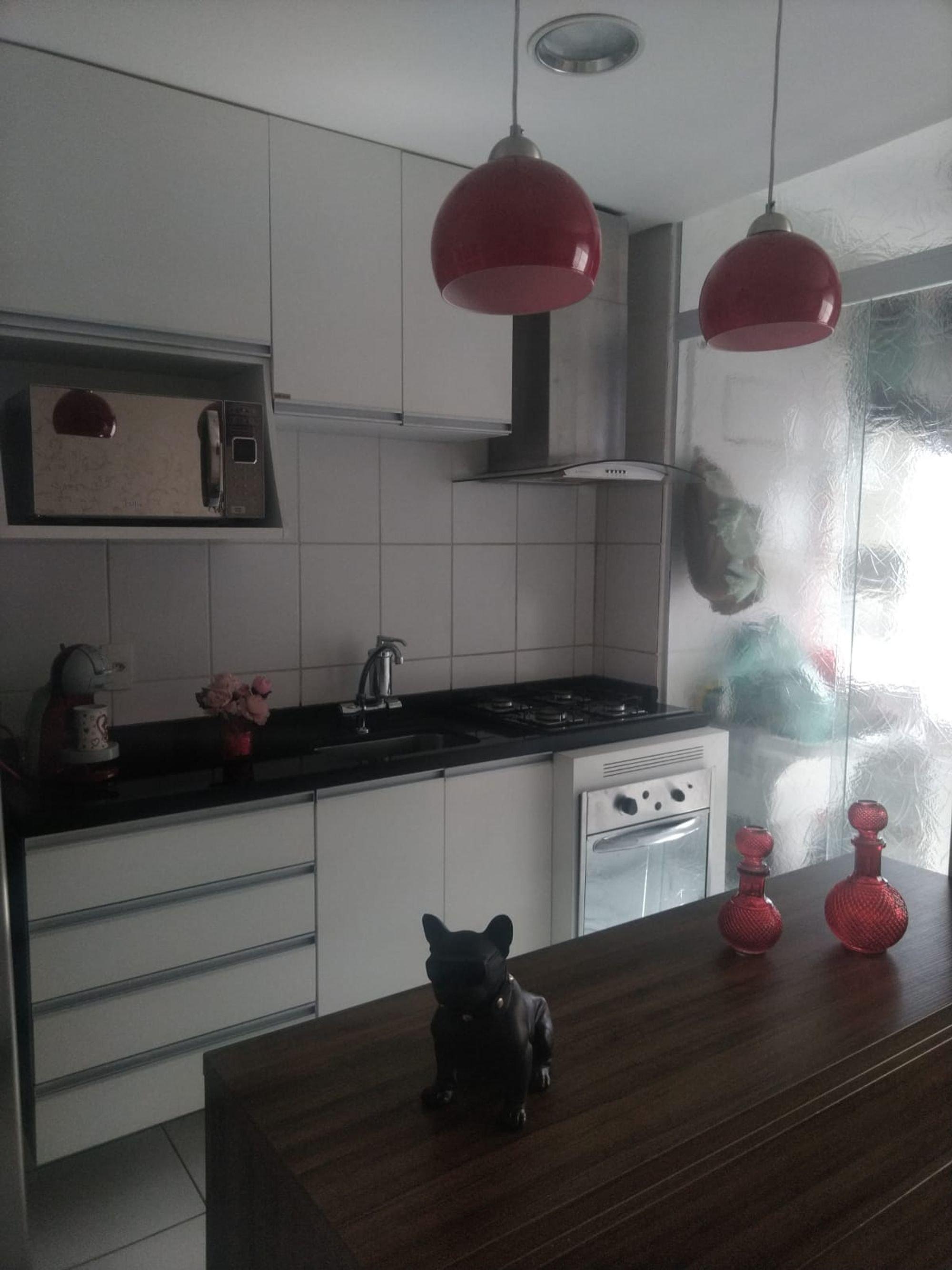 Foto de Cozinha com forno, cão, vaso