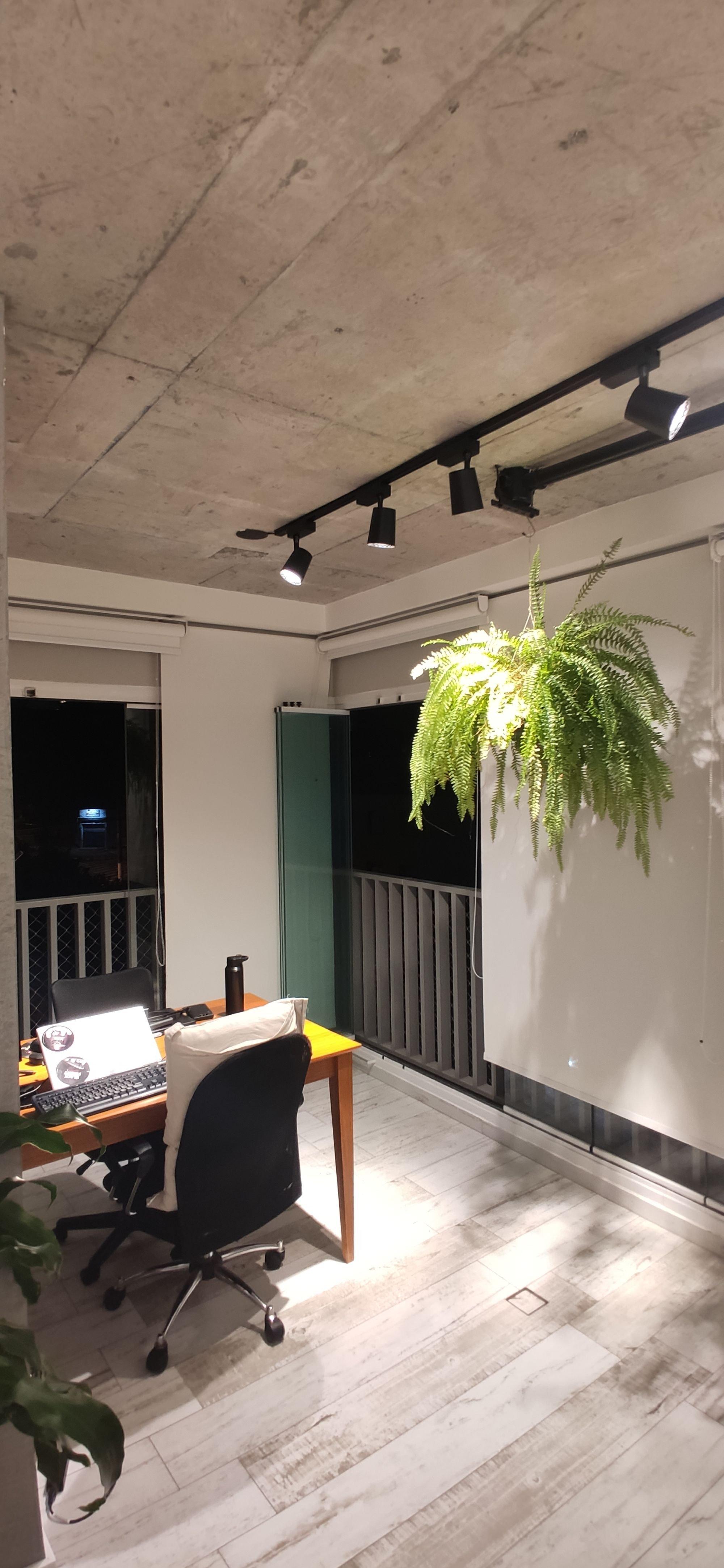 Nesta foto há vaso de planta, cadeira