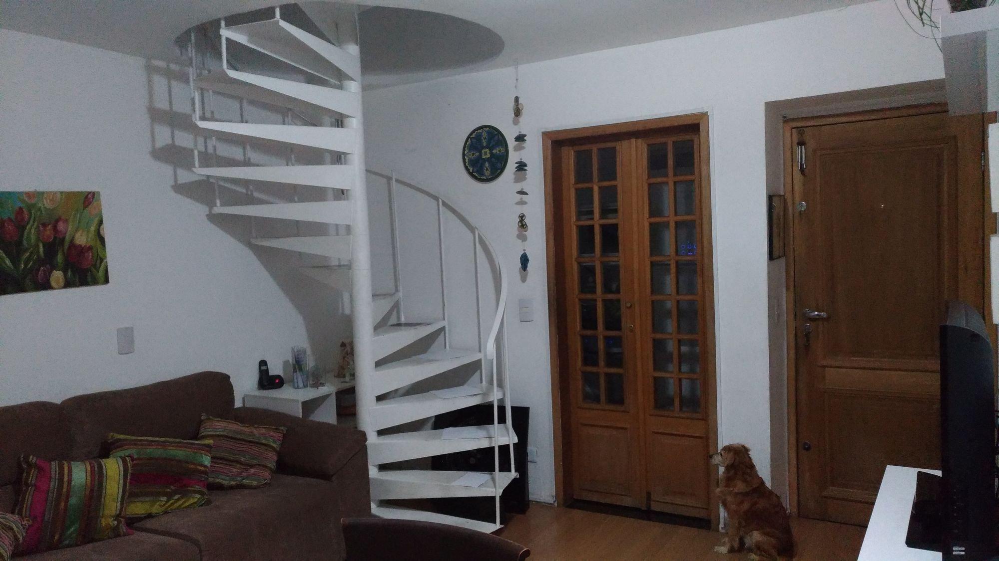 Foto de Sala com sofá, cão, cadeira