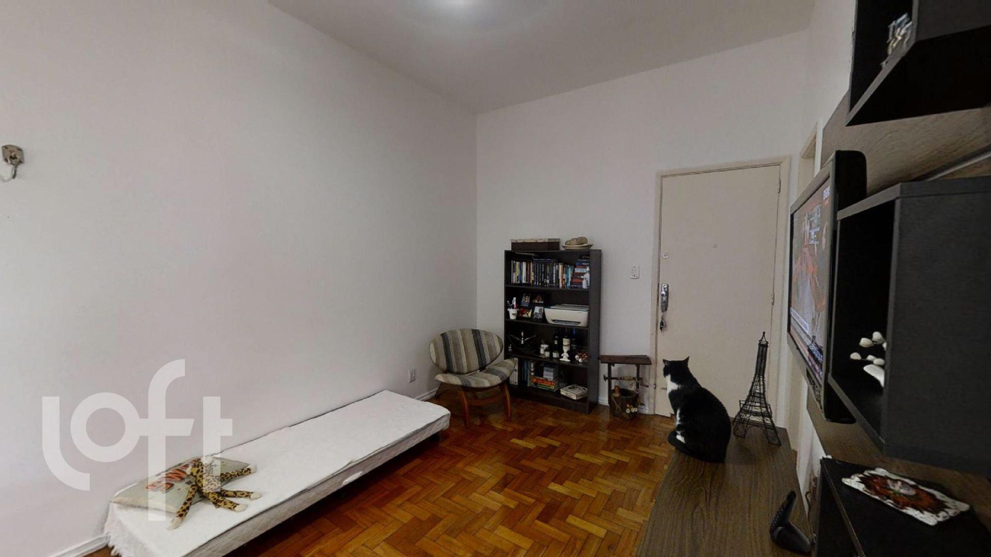 Foto de Sala com cama, televisão, cadeira, gato, livro