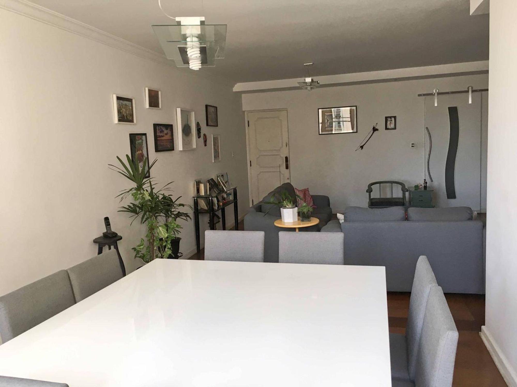 Nesta foto há vaso de planta, sofá, cadeira, mesa de jantar