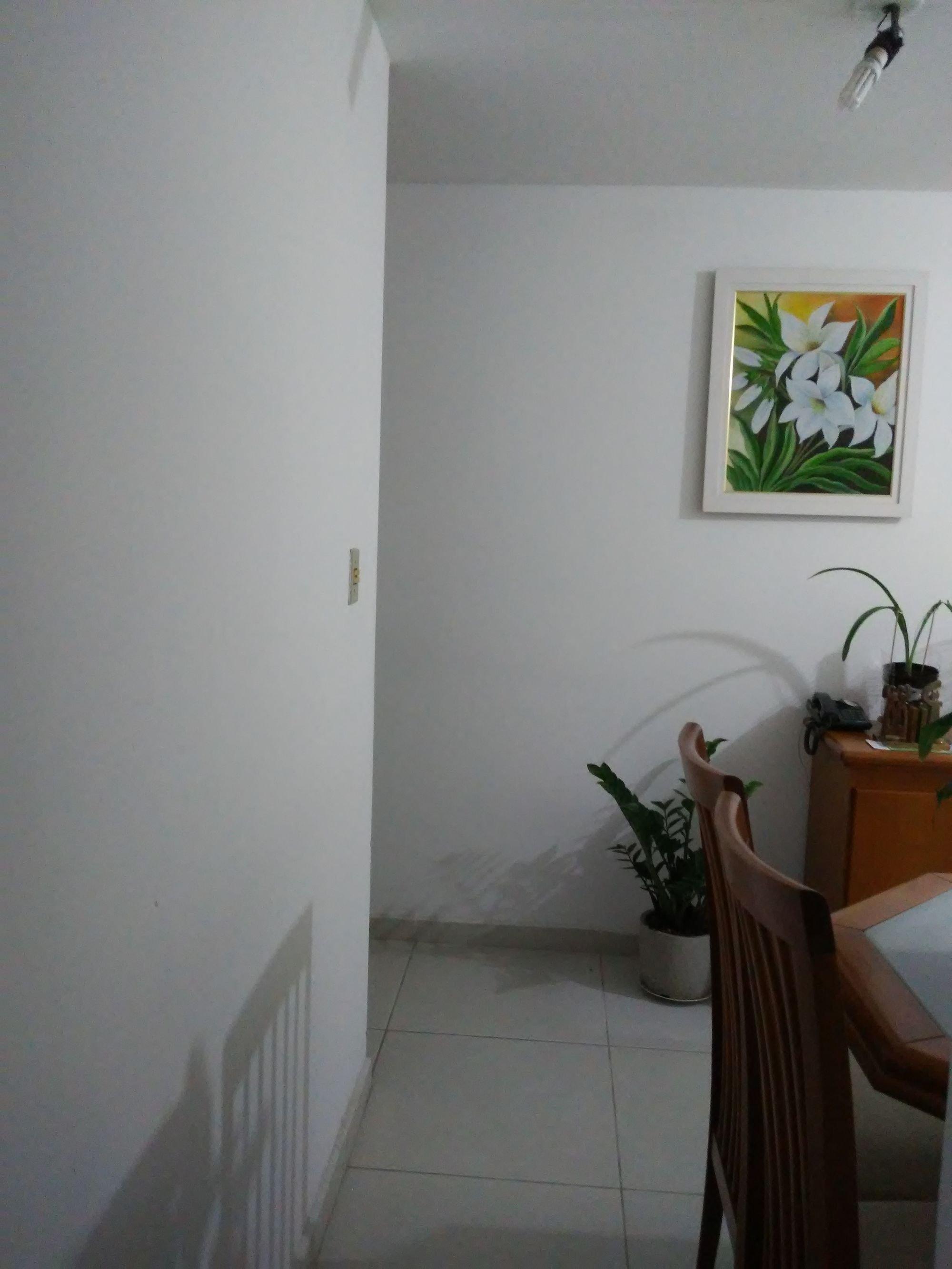 Foto de Sala com vaso de planta, cadeira
