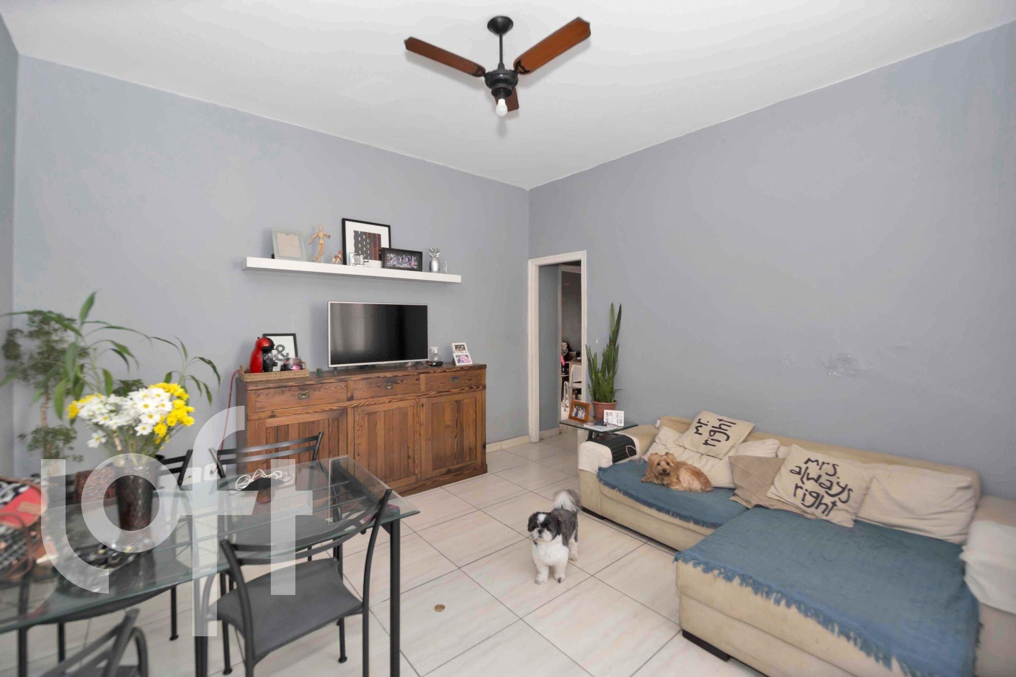 Foto de Sala com vaso de planta, sofá, televisão, cão, cadeira, mesa de jantar