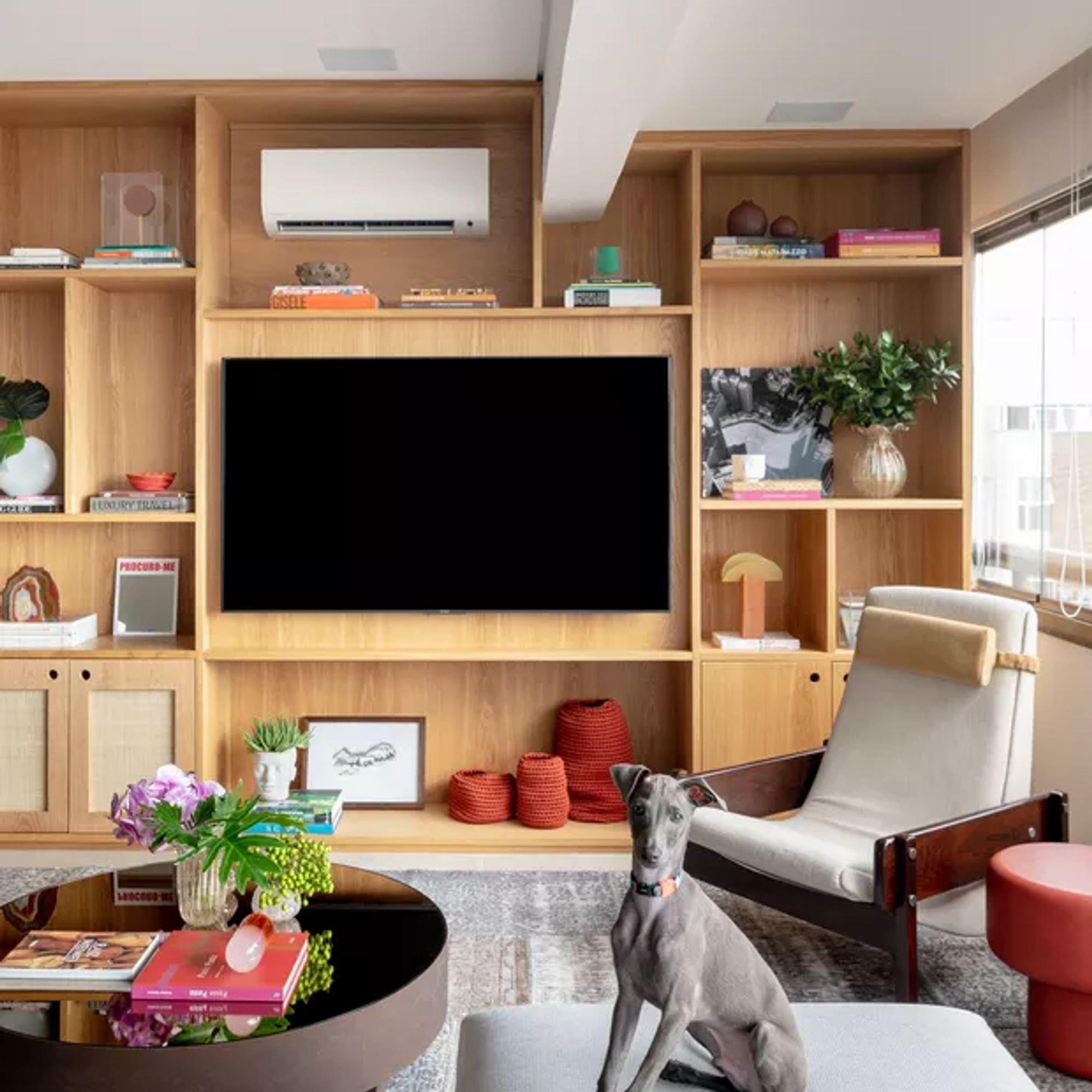 Foto de Sala com vaso de planta, televisão, vaso, cão, cadeira, livro