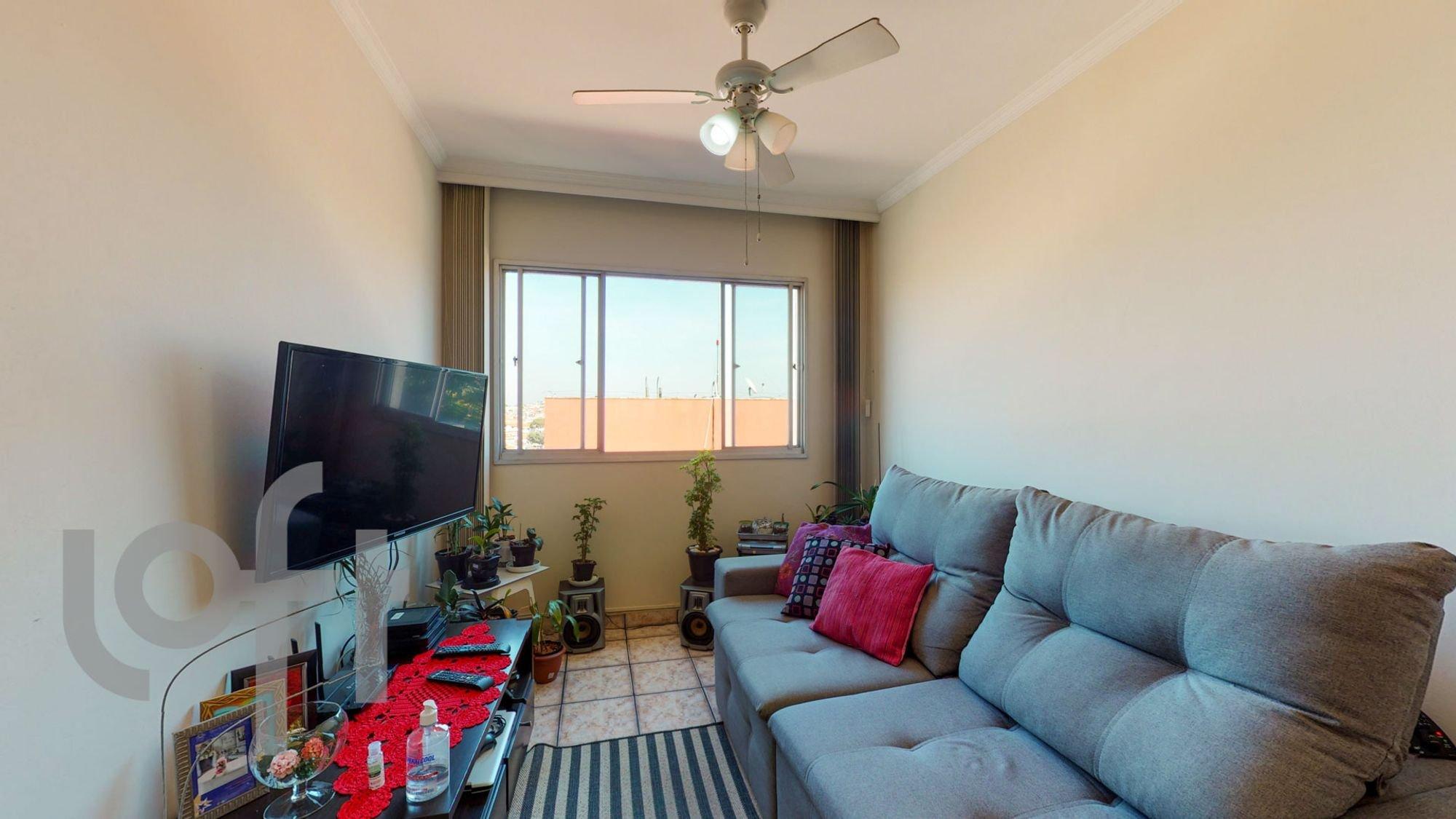 Foto de Sala com vaso de planta, sofá, televisão