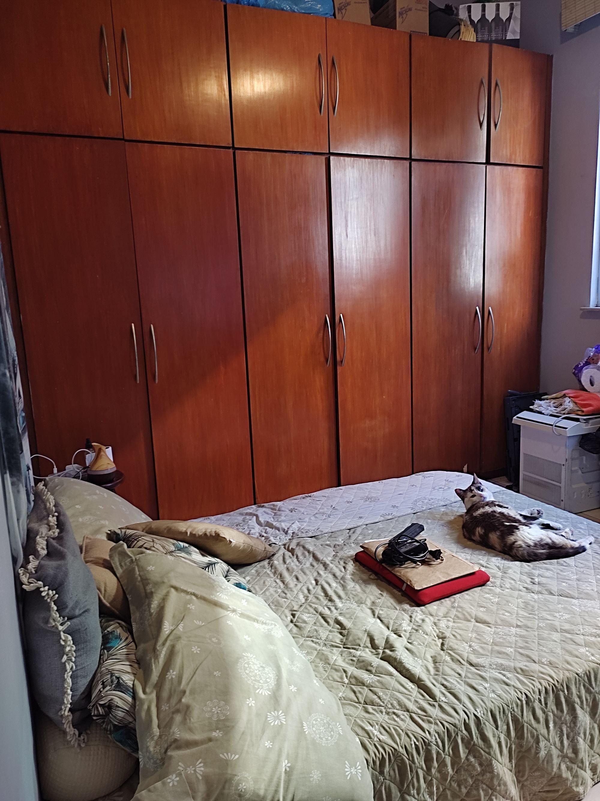 Foto de Quarto com cama, gato, livro