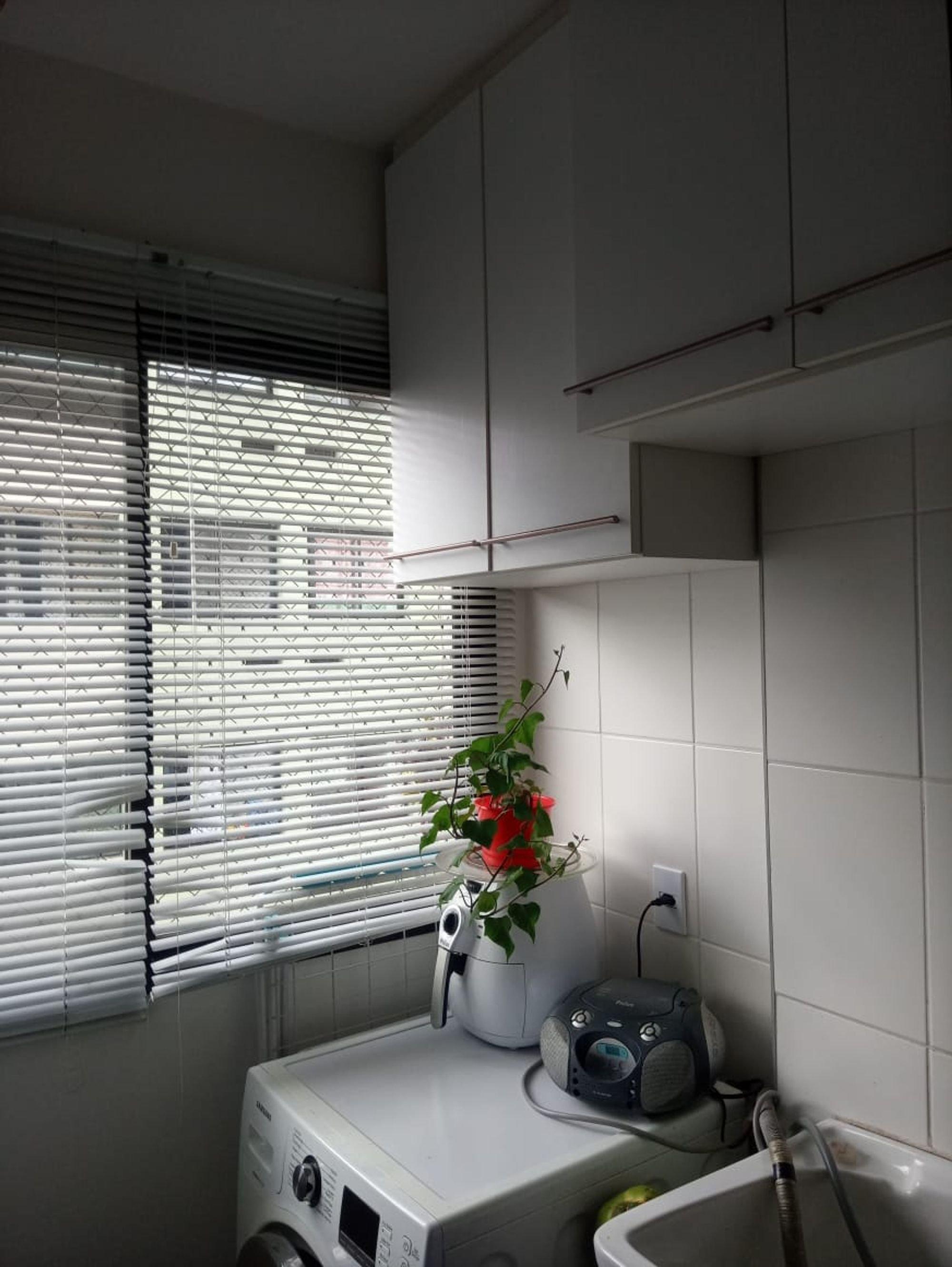 Foto de Lavanderia com vaso de planta, pia